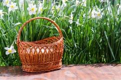 Ostereier im grünen Gras Festliche Dekoration lizenzfreie stockfotos
