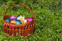 Ostereier im grünen Gras Festliche Dekoration stockfotos
