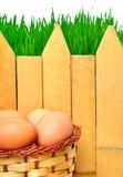 Ostereier im Korb gegen das grüne Gras, Bretterzaun Lizenzfreies Stockfoto