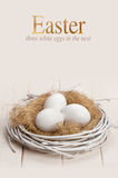 Ostereier im Nest Lizenzfreie Stockfotos