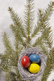 Ostereier im Nest. Lizenzfreies Stockfoto