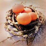 Ostereier im Nest Lizenzfreie Stockbilder
