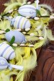 Ostereier im Nest und in der Feder Lizenzfreies Stockbild