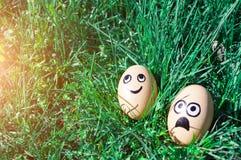 Ostereier mit den gezogenen lustigen Gesichtern, die im grünen Gras liegen Junges Küken in Wanne, 2 malte Eier und Blumen Lizenzfreie Stockbilder
