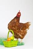 Ostereier mit einer Henne Stockfoto