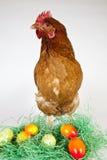Ostereier mit einer Henne Lizenzfreie Stockfotos
