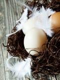 Ostereier mit empfindlichen Federn in einem Nest Lizenzfreie Stockfotografie