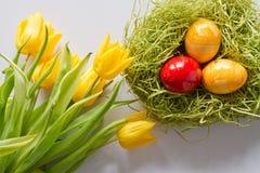 Ostereier mit gelben Tulpen Lizenzfreies Stockbild