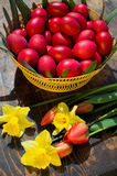 Ostereier - Rumänien Stockfoto