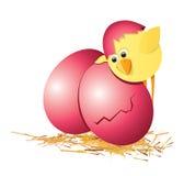 Ostereier und Hühner Stockfotos
