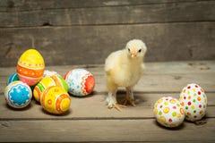Ostereier und Huhn lizenzfreie stockfotografie