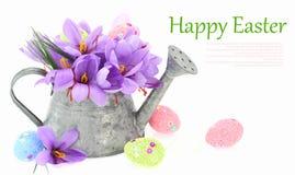Ostereier und Safranblumen lizenzfreies stockfoto