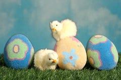 Ostereier und Schätzchenküken auf dem Gras Lizenzfreie Stockfotos