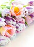Ostereier und Tulpen Stockfotografie