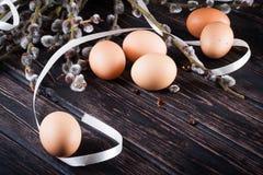 Ostereier und Weidenniederlassungen Lizenzfreie Stockbilder