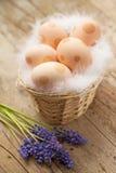 Ostereier verziert mit Punkten Stockbilder