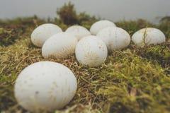 Ostereier verziert mit Wachs Stockfoto