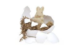 Osterhase in einem unterbrochenen Ei stockbild