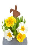Osterhase und Frühlingsblume Stockfoto