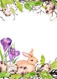 Osterhase mit farbigen Eiern, Gras, Krokus blüht Aquarell-Ostern-Karte stock abbildung