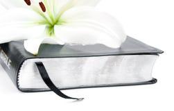 Osterlilie und Bibel Stockbild