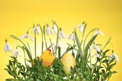 Ostern-Anordnung stockbilder