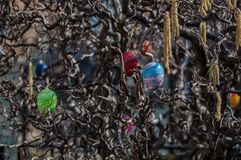 Ostern-Baum Lizenzfreies Stockfoto