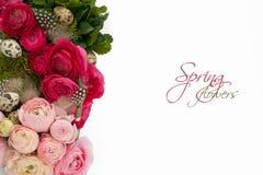 Ostern-Blumen Lizenzfreie Stockfotos