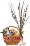 Ostern-Dekoration Stockfotografie