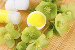 Ostern-Dekoration mit Eierschalen auf einer gelben Auflage plus Hellebore Stockfotografie
