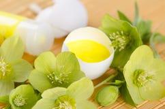 Ostern-Dekoration mit gelber Farbe in einer Eierschale und einem Hellebore Lizenzfreie Stockfotografie