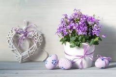 Ostern-Dekorationen mit Ostereiern, einem Topf purpurroten Blumen des Frühlinges und Herzen auf einem weißen hölzernen Hintergrun Stockfotografie