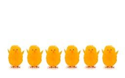 Ostern-Dekorationshühner auf weißem Hintergrund lizenzfreies stockfoto