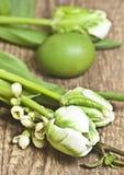 Ostern, Eier, weiße Tulpen, Eier, weiße kleine Blumen auf einem Zweigbaum, guail ärgert Lizenzfreie Stockfotos