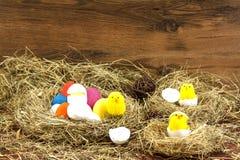 Ostern färbte Eier im Heu Kleines neugeborenes Küken Lizenzfreie Stockfotos
