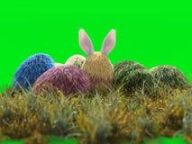 Ostern-Feiertagsei-Farbisolat vektor abbildung