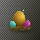Ostern-Feiertagskonzept, Frühlingsanfangidee, Ostern-Zusammensetzung mit Eiern und Schneeglöckchen blühen die Keimung von der Eie stock abbildung