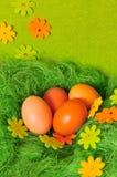 Ostern-Frühling Ei Lizenzfreie Stockbilder