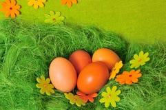 Ostern-Frühling Ei Stockbild