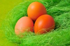 Ostern-Frühling Ei Lizenzfreies Stockbild