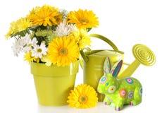 Ostern-Frühling mit Blumen Lizenzfreies Stockfoto