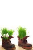 Ostern, Frühling und Kraft der Natur Lizenzfreies Stockfoto