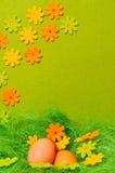 Ostern-Frühlingsblume Stockbild