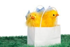Ostern-Geschenk Stockbild