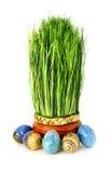 Ostern-Gras und Eier Stockbild