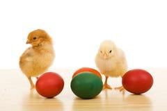 Ostern-Hühner auf der Tabelle mit gefärbten Eiern Stockbild