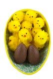 Ostern-Hühner im Osterei stockfoto