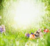 Ostern-Hintergrund mit flaumigem Kaninchen auf Gras und Blumen mit Ostereiern im Park oder im Garten Stockfotografie