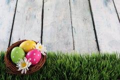 Ostern-Hintergrund mit Gras Stockfotografie