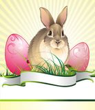 Ostern-Hintergrund mit Kaninchen Lizenzfreie Stockfotos